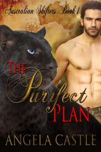 The Purrfect Plan