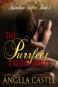 The Purrfect Predicament