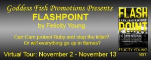 VBT_TourBanner_Flashpoint