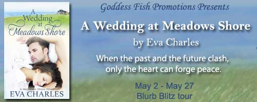BBT_AWeddingAtMeadowsShore_Banner copy