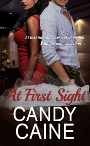 mediakit_bookcover_atfirstsight