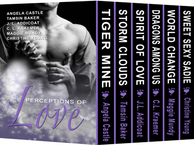 Perceptions of Love Boxed Set
