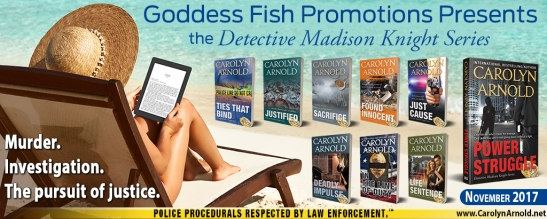 Tour Banner_Detective-Madison-Knight-Series